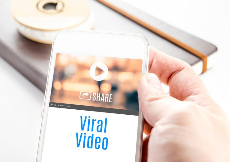 This year's top viral videos